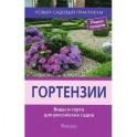 Гортензии.Виды и сорта для российских садов