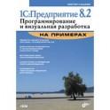 1С:Предприятие 8.2. Программирование и визуальная разработка  на примерах. + CD.