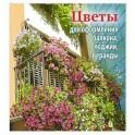 Цветы для оформления балкона,лоджии,веранды