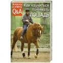 Как научиться понимать лошадь