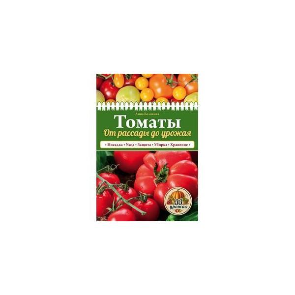 От рассады до урожая томаты 155