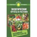 Экзотические фрукты и растения:выращиваем дома