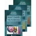 Анатомия человека. Учебник в 3-х томах