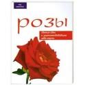 Розы: Свежие идеи и зарекомендовавшие себя сорта