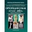 """Ортопедия собак. Атлас """"ВОА"""". Диагностический подход с учётом породной предрасположенности"""