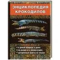 Энциклопедия крокодилов