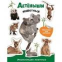 Энциклопедия животных с накл. Детеныши животных