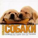Альбом. Собаки. Самые лучшие фотографии