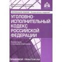 Уголовно-исполнительный кодекс РФ. Комментарий к последним изменениям