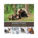 Календарь на 2018 год, настенный, перекидной Животные родного края