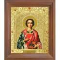 Икона Пантелеймон Целитель. 10x12