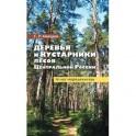 Деревья и кустарники лесов Ценр.России.Атлас-опред