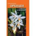 Орхидеи и особенности их выращивания