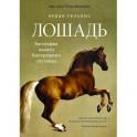 Лошадь.Биография нашего благородного спутника