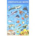 """Плакат """"Обитатели моря"""" (3410)"""
