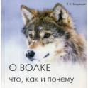 О волке: что, как и почему