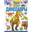Динозавры. Первая энциклопедия для малышей