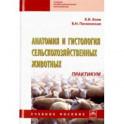 Анатомия и гистология сельскохозяйственных животных. Практикум. Учебное пособие