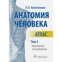 Анатомия человека. Атлас. В 3-х томах. Том 3. Неврология, эстезиология