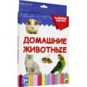 """Разумные карточки """"Домашние животные"""" (20 карточек)"""
