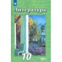 Литература. 10 класс. Учебник. Базовый и углубленный уровень. В 2-х частях. Часть 2. ФП