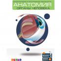 Анатомия: Органы человека. Энциклопедия в дополненной реальности