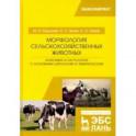 Морфология сельскохозяйственных животных. Анатомия и гистология с основами цитологии и эмбриологии