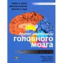 Атлас анатомии головного мозга. Наглядное руководство