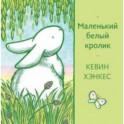 Маленький белый кролик