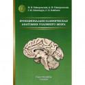 Функционально-клиническая анатомия головного мозга
