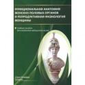 Функциональная анатомия женских половых органов. Учебное пособие