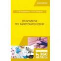 Практикум по микробиологии. Учебное пособие