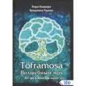 Toframosa - волшебный мох. Все про исландскую магию