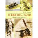 Пчёлы, осы, пауки и другие строители