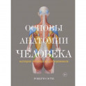Основы анатомии человека. Наглядное руководство для художника