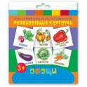 """Развивающие карточки """"Овощи"""" (12 штук)"""