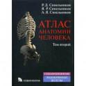 Атлас анатомии человека. Учебное пособие. В 4 томах. Том 2