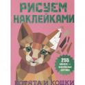 Котята и кошки