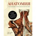 """Анатомия:с иллюстрациями из классической """"Анатомии Грея"""""""