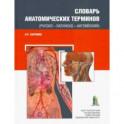 Словарь анатомических терминов(русско - латинско - английский)