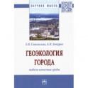Геоэкология города. Модели качества среды. Монография