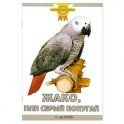 Жако, или Серый попугай
