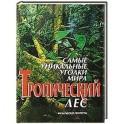 Самые уникальные уголки мира. Тропический лес