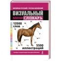 Китайско-русский русско-китайский визуальный мини-словарь